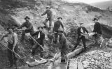 Miners treballant a Califòrnia
