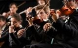 Violinistes