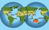 Aquesta és la ruta de la volta al món de l'Amelia