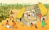 Les cases dels pagesos eren d'una sola habitació