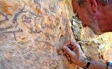Un expert neteja les pintures trobades prop de Capçanes