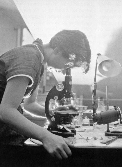 Rosalind Franklin mira pel microscopi